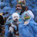 Downtown Super Sunday 2018 - Big Chief Bird, Young Hunters Mardi Gras Indians, Photo by Noe Cugny