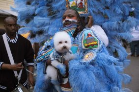 Downtown Super Sunday 2018 - Big Chief Bird, Young Hunters Mardi Gras Indians, Photo by Noe Cugny